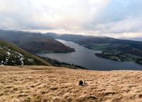 Ullswater from Arthurs Pike