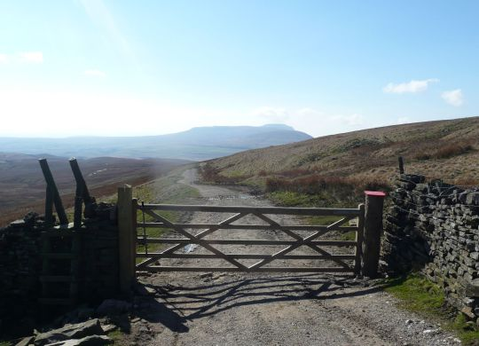 Ingleborough from Cam Fell