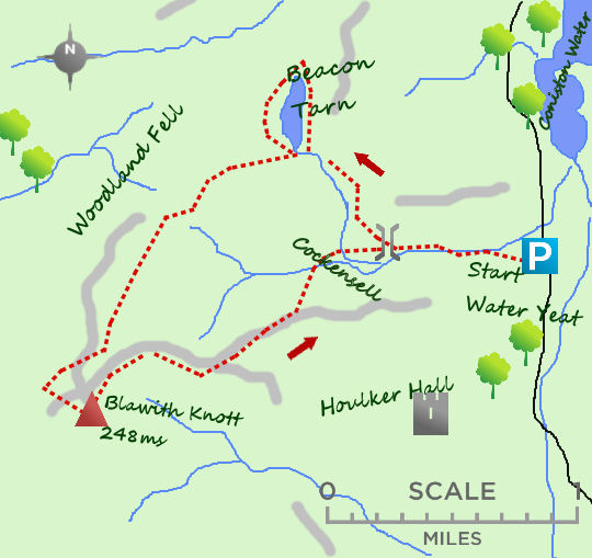 Woodland Fell map