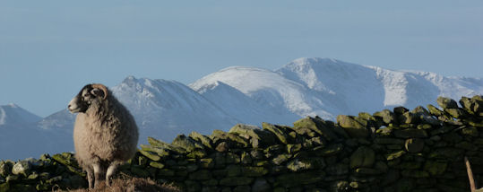 Causey Pike Ridge in snow