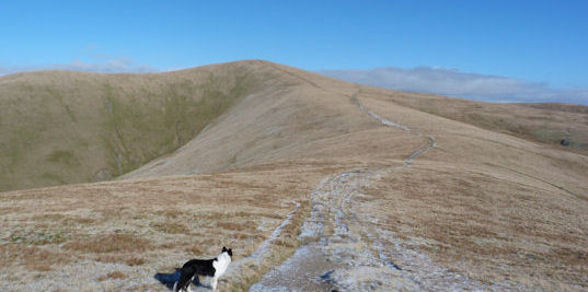 The walk to come on the Howgills ridge