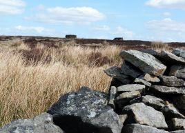 Keighley Moor