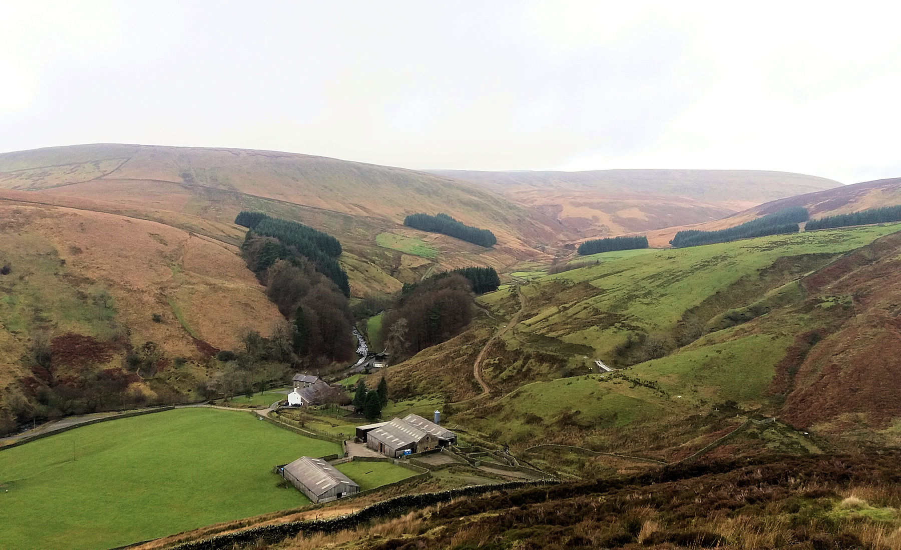 Whitendale from the east