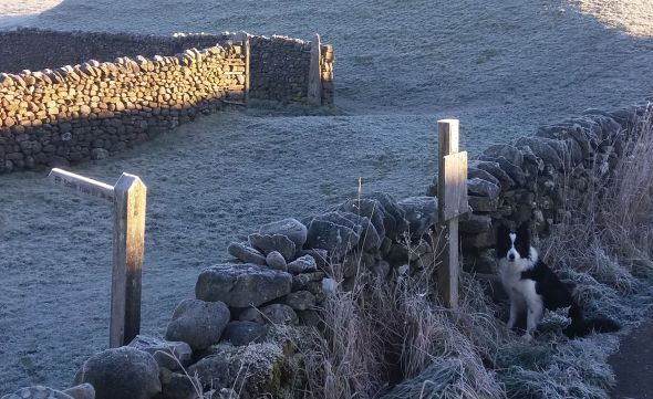 Waiting at the stile
