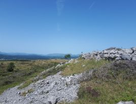 Looking north on Whitbarrow
