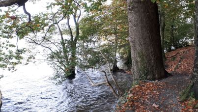 Floods on Windermere