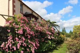 Manesty Cottages in bloom
