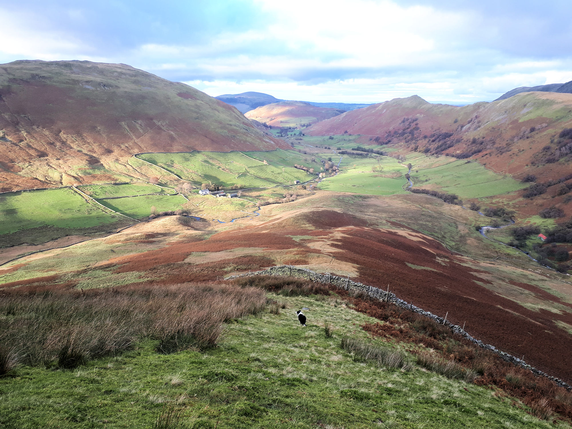 Martindale from The Nab