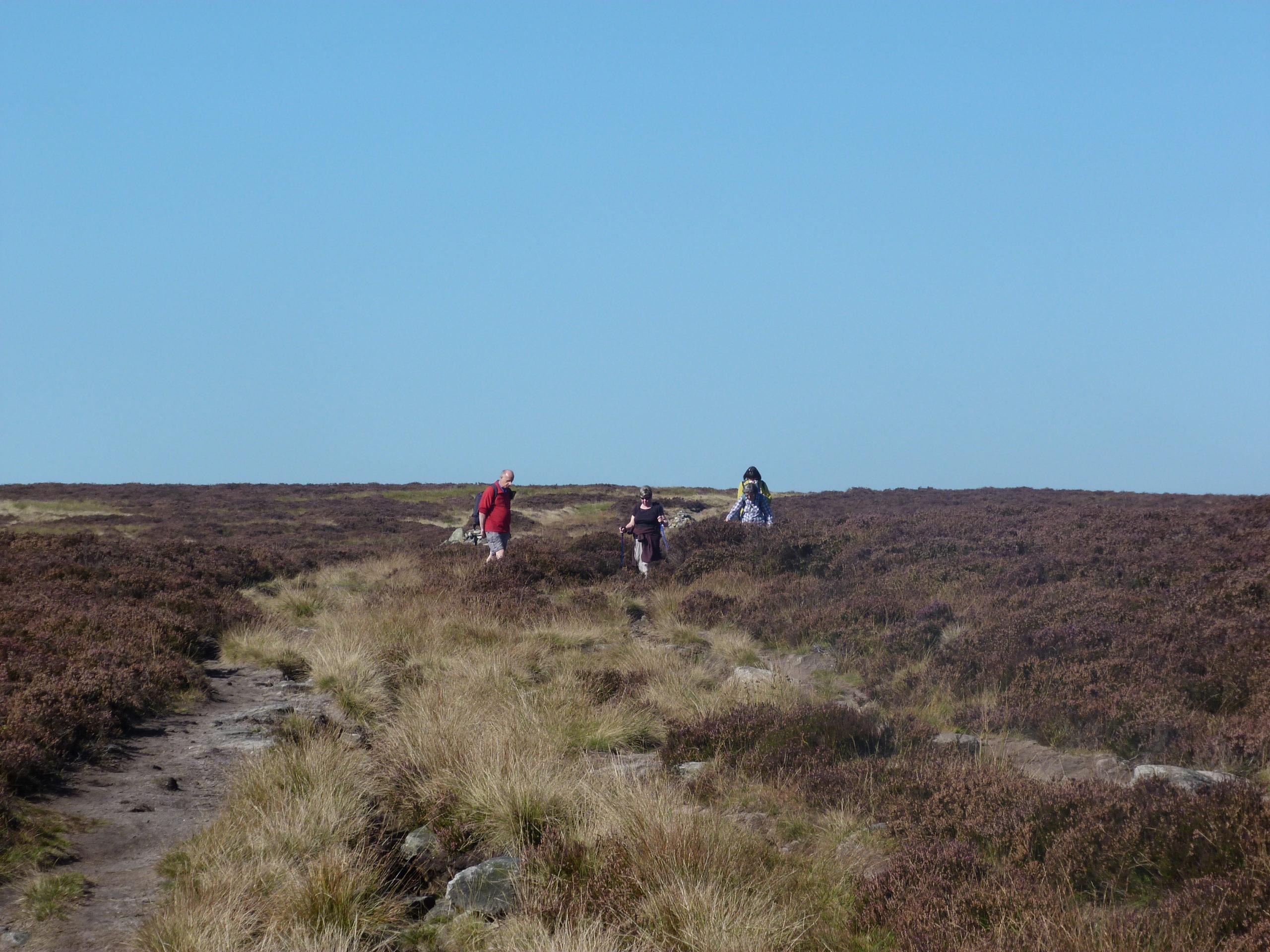 Moorland walking