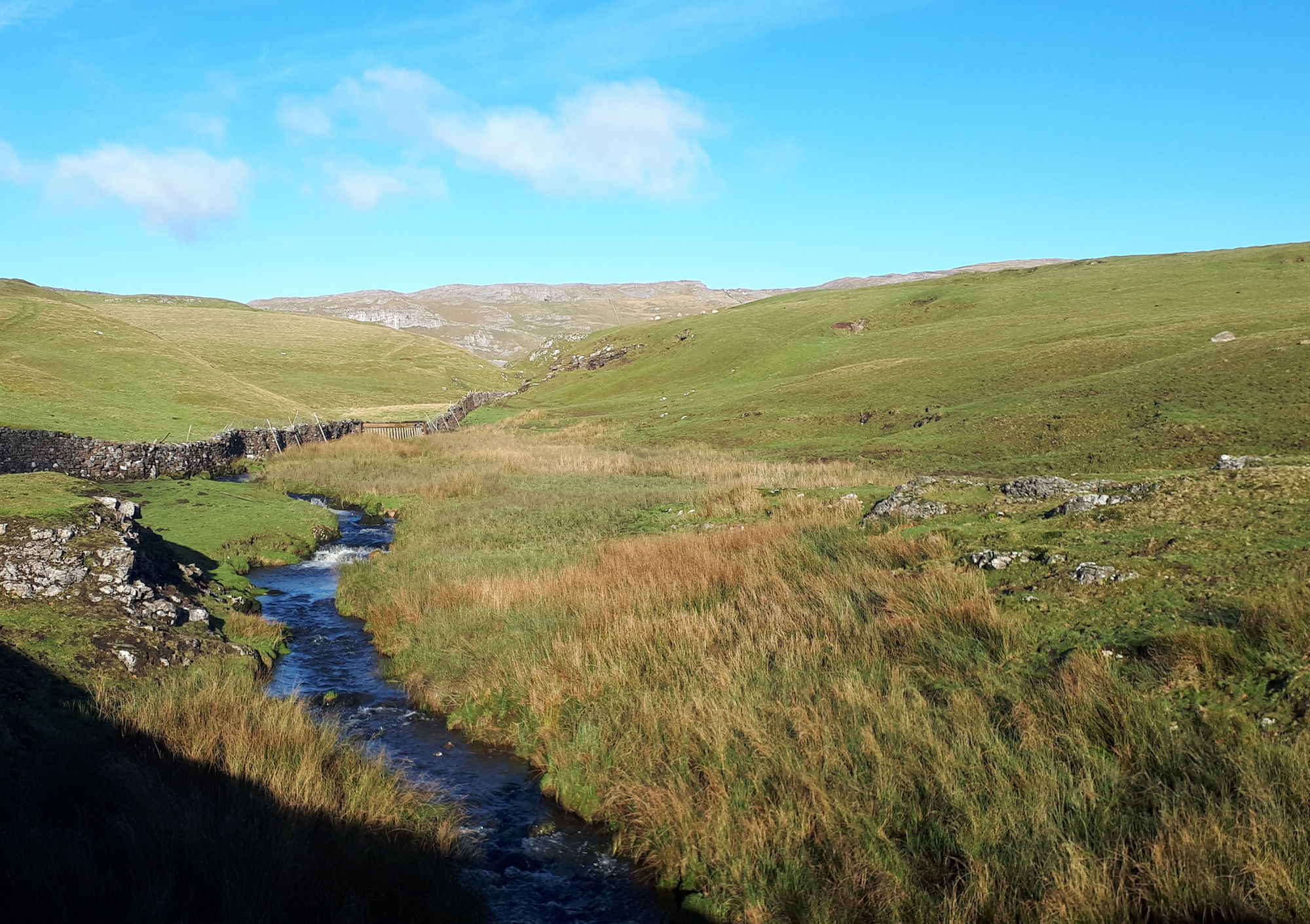 Attermire Scar and the Settle cliffs
