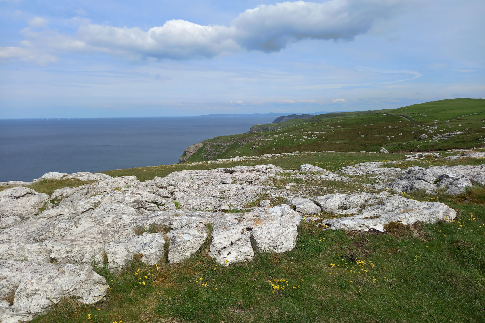 Limestone headland