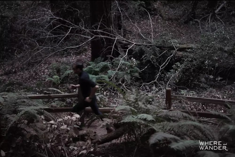 Muir Woods Trail Running