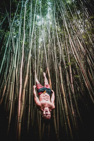 Man hanging from bamboos in Road To Hana bamboo forest