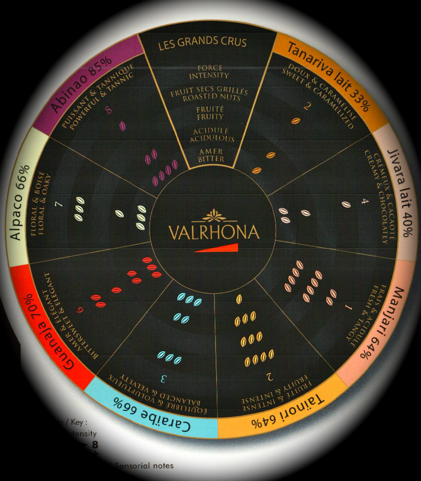 Valrhona Chocolate Wheel of Flavor | Where and What In the World