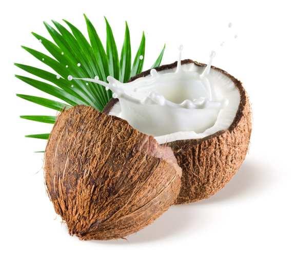 5 Easy-to-Make, Healthy Recipes Using Coconut Milk