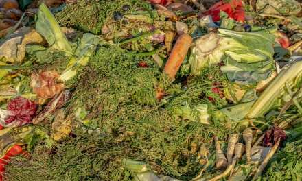 James Beard Foundation Launches Waste Not Initiative to Combat Food Waste