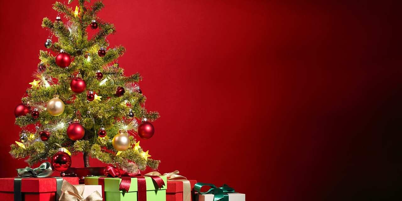 Holiday Gift Encyclopedia: Perfect Gifts for Everyone