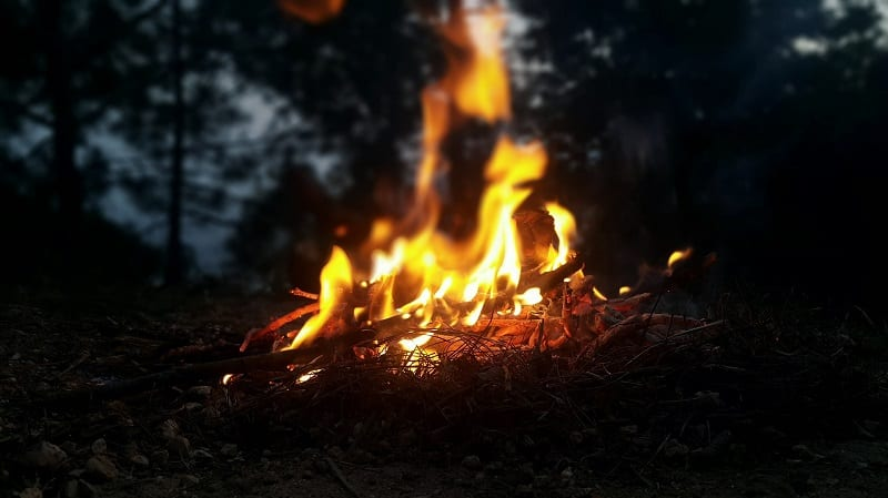 How To Keep The Whole Family Safe When Camping In The Wood