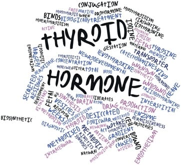 Abstract word cloud for Thyroid hormone with related tags and terms