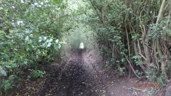 Hawridge, Cholesbury Lane