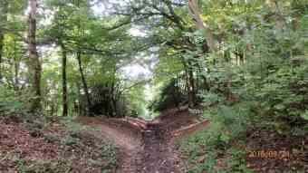 Drovers way to Chinnor Hill