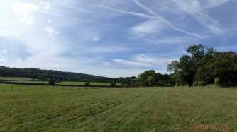 Yeosden's Wood, Radnage