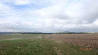 New Timber Hill & Devil's Dyke