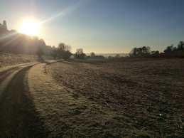 Frosty sunrise, Hambleden