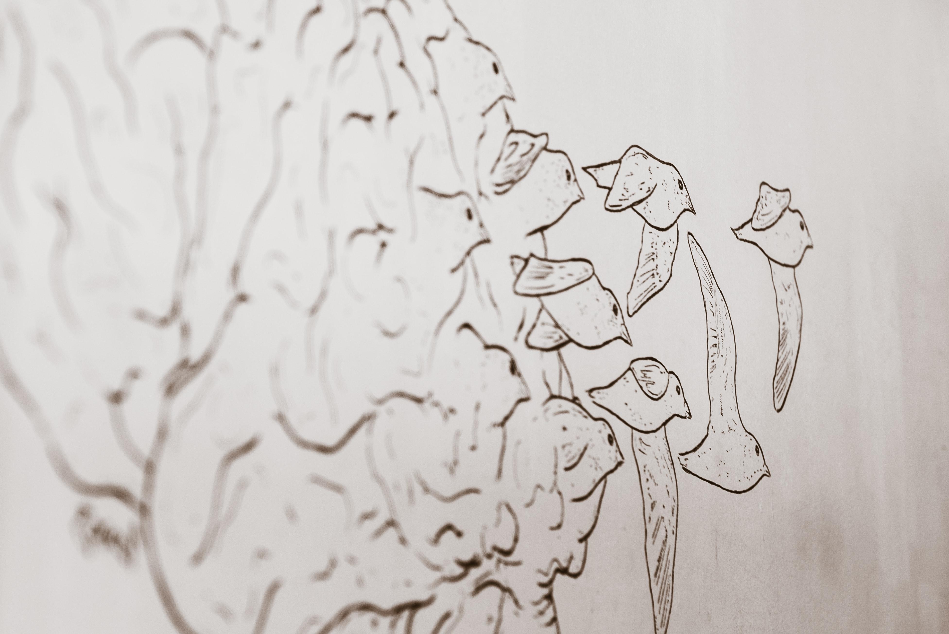 brain, birds