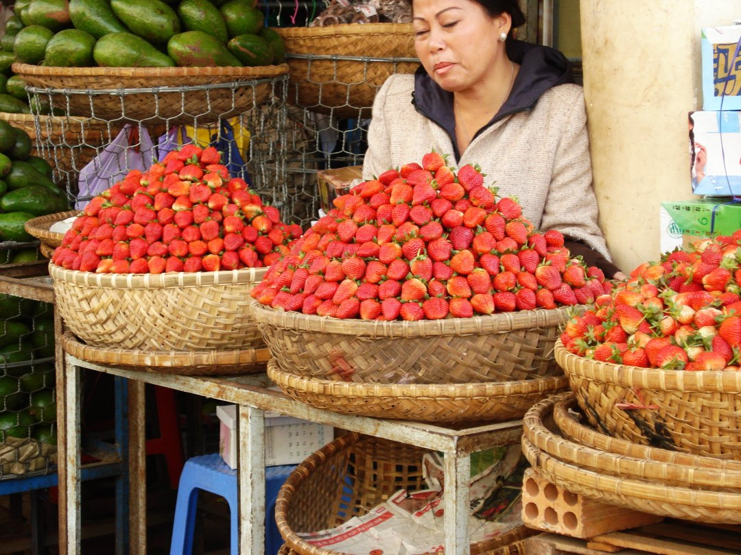 Vietnam Dalat7
