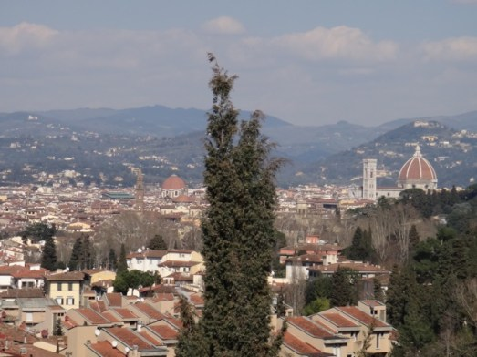 View from the roof top of the Villa. You can see Duomo in the distance.
