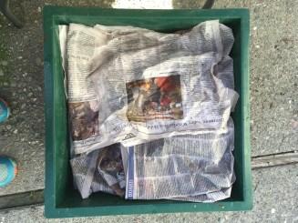 moist newspaper cover