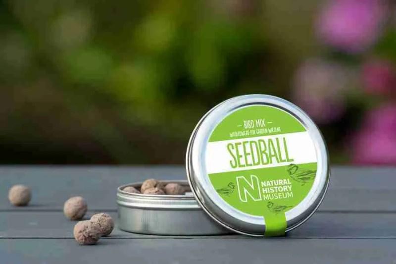 Seedball Bird Mix