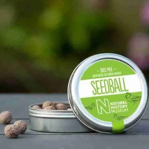 Bird Mix- Seedball