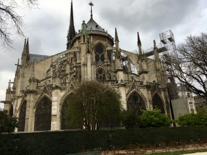 Notre Dame Back