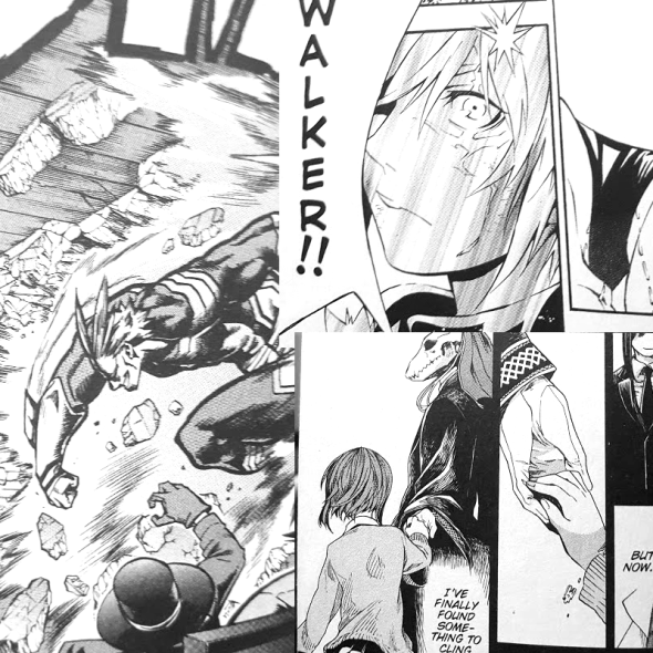 Pictures of different comics, My hero on the left, D Gray Man on top right, and Ancient Magus Bride on bottom right