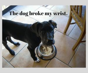 the-dog-broke-my-wrist