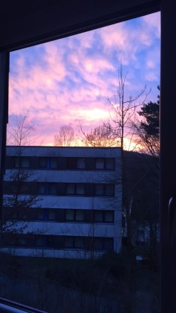 Gorgeous sunset from my window
