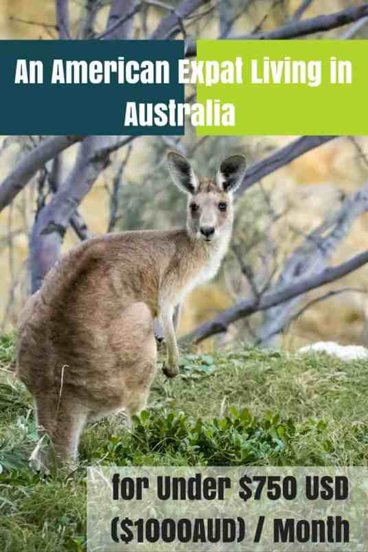 An American Expat Living in Australia for Under $750 USD ($1000AUD) : Month2