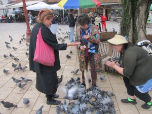 Sylvia, Mom and Dijana loved feeding the pigeons in old town Sarajevo. No thanks.