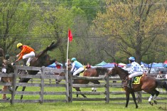 Maryland Hunt Cup