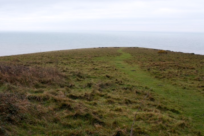 Cattle path to the edge of the chalk cliffs