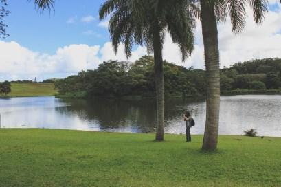 12-11-28-oahu-hawaii-5368.jpg