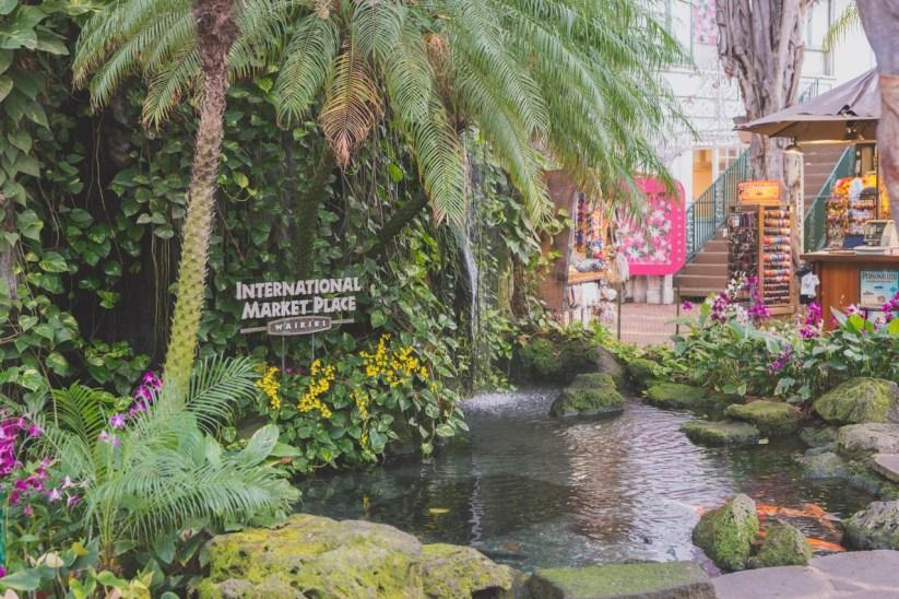 12-11-29-oahu-hawaii-00153.jpg
