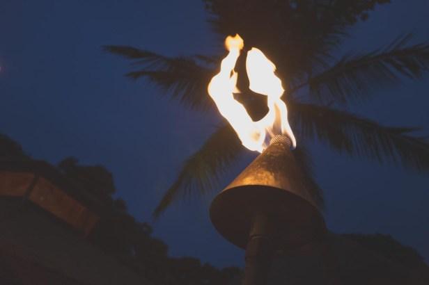12-11-29-oahu-hawaii-00170.jpg