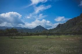 12-11-30-oahu-hawaii-00222.jpg