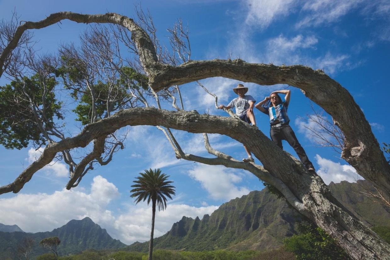 12-11-30-oahu-hawaii-00238.jpg