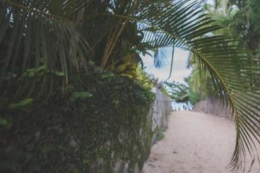 12-11-30-oahu-hawaii-00255.jpg