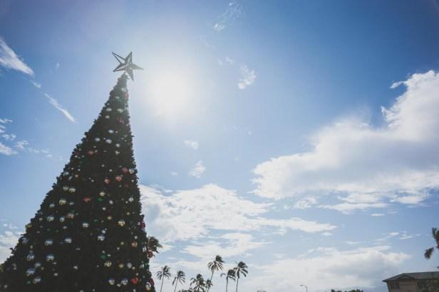 12-12-01-oahu-hawaii-00275.jpg