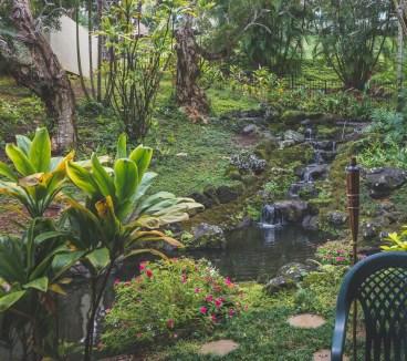 12-12-03-oahu-hawaii-00406.jpg